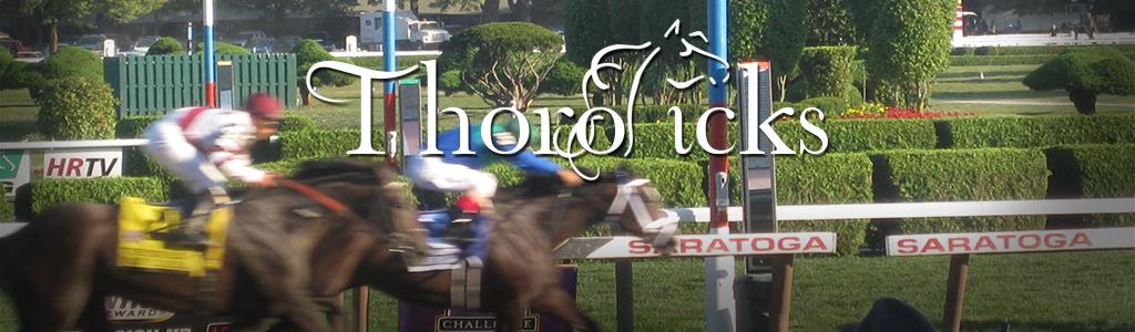 Home page - Thoropicks | Thoroughbred Horse Racing Analysis